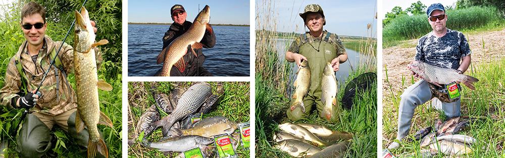 fishhungry заказать в украине